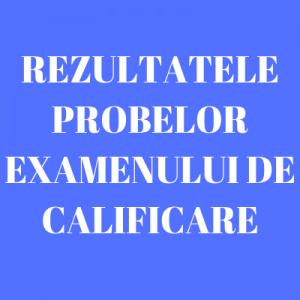 REZULTATELE PROBELOR EXAMENULUI DE CALIFICARE